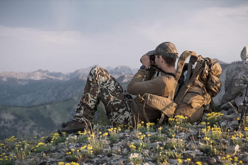 glassing on a high mountain ridge for mule deer bucks